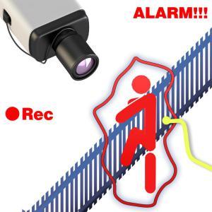 reg-alarm